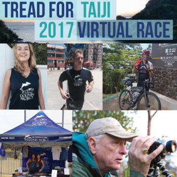 2017 Dolphin Project Virtual Race Image