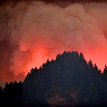 Oregon Wildfire Relief  Image