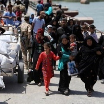 Aid for Mosul  Image