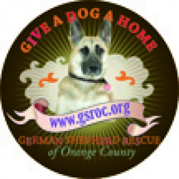 ASSOCIATION OF GERMAN SHEPHERD RESCUERS INC