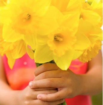 Candy Best's Daffodil Days Fundraiser:   Norwalk CT ACS Office Image