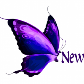NEW FAVOUR NEW VISIONS