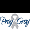 pray-for-gray-foundation's profile image - click for profile