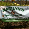 marilynsspringstroll's profile image - click for profile