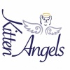 kitten-angels's profile image - click for profile