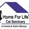 home-for-life-cat-sanctuary's profile image - click for profile