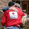 americanredcross's profile image - click for profile