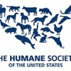 the-humane-societyof-the-united-states's profile image - click for profile