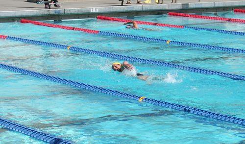 CFSC_coachdswim
