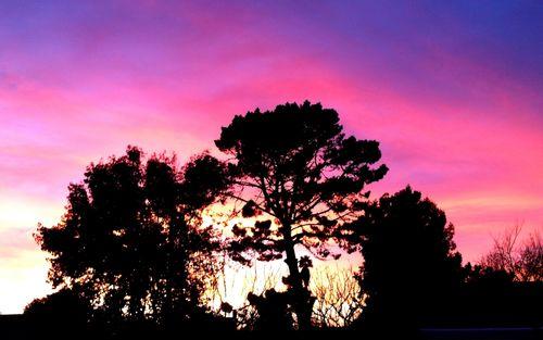 CFSC_Sunset