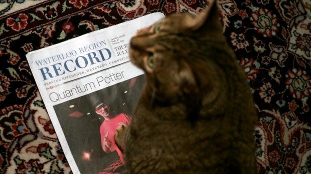 Quantum Potter and Schrodinger's cat