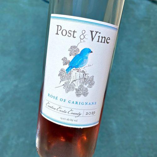 Post & Vine Rose