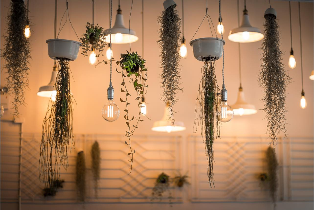 Blog - Interior Design Ideas   Decor Matters