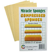 Compressed Sponges