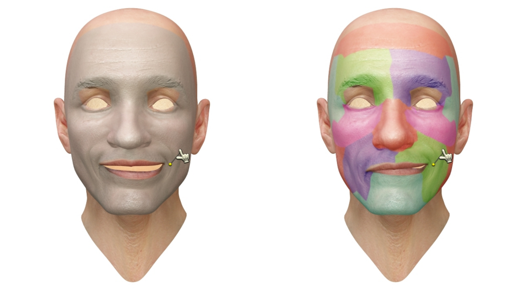 Interactive Region-Based Linear 3D Face Models-Image
