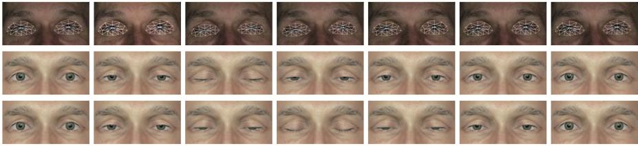 Modeling and Animating Eye Blinks-Image