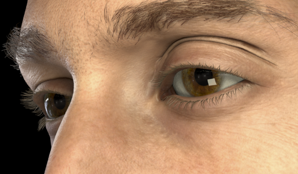 Detailed Spatio-Temporal Reconstruction of Eyelids-Image