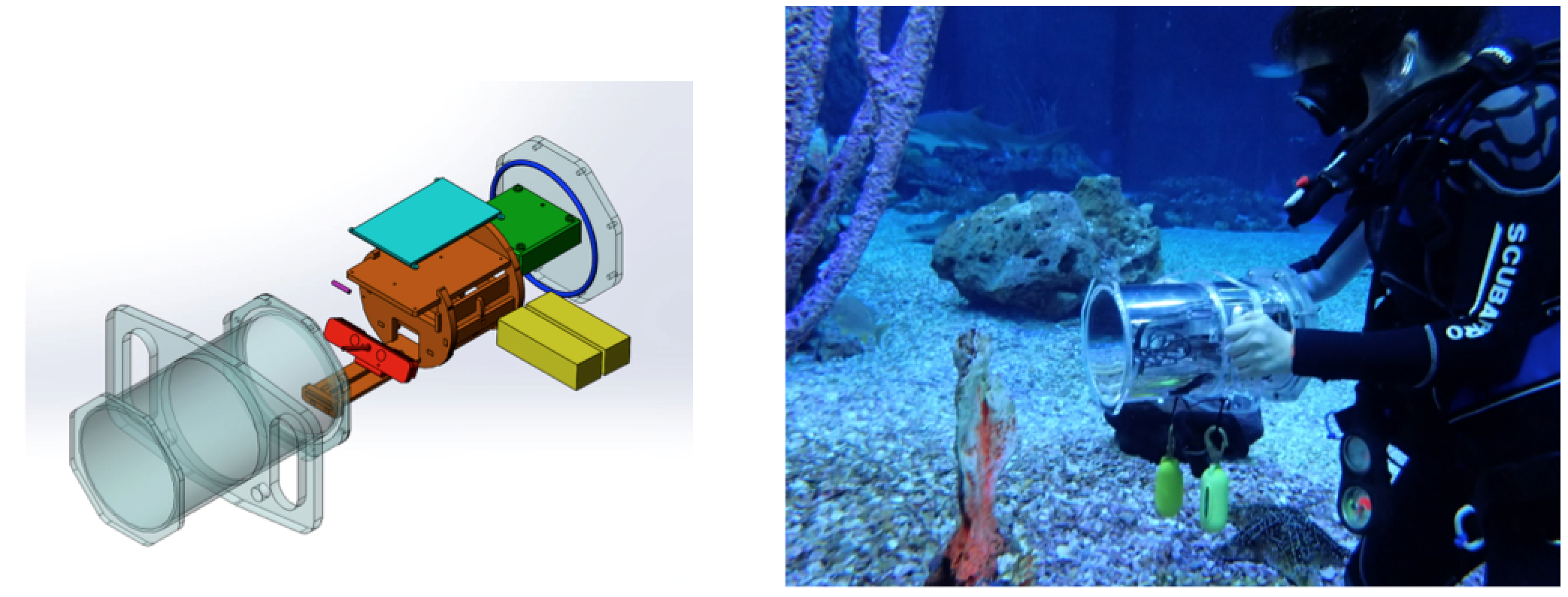 Underwater 3D Capture using a Low-Cost Commercial Depth Camera-Image