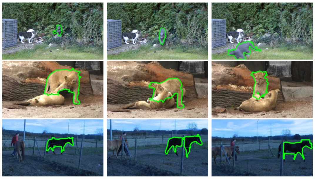 Fully Connected Object Proposals For Video Segmentation-Image