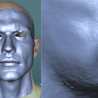 Anatomically-Constrained Local Deformation Model for Monocular Face Capture-Image