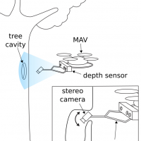 tree-cavity-inspection-using-aerial-robots-image