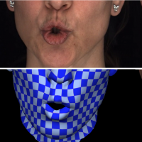 high-quality-reconstruction-of-lips-from-monocular-video-image