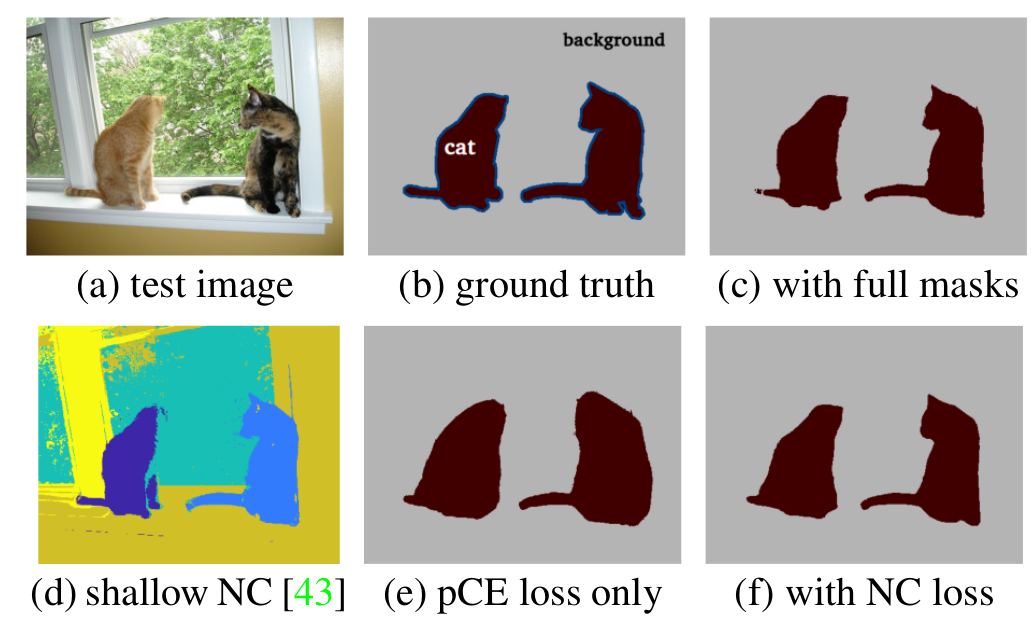 normalized cut loss for weakly supervised cnn segmentation disney