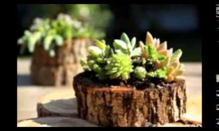Small Wood Crafts