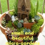 Small and Beautiful Micro-Gardens