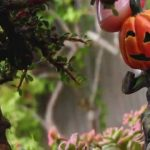 Miniature Garden Ideas for Halloween