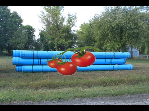 PVC Tomato Cages DIY Hacks FAST & EASY Ideas (Plastic)