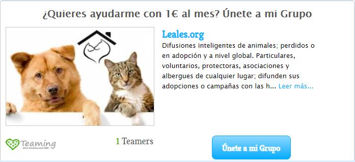 ayúdanos, asociándote con sólo 1€ al mes en leales.org/teaming