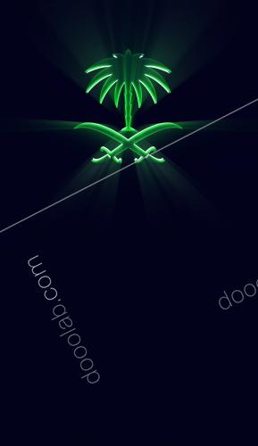 ايقونة شعار المملكة السيفين والنخلة