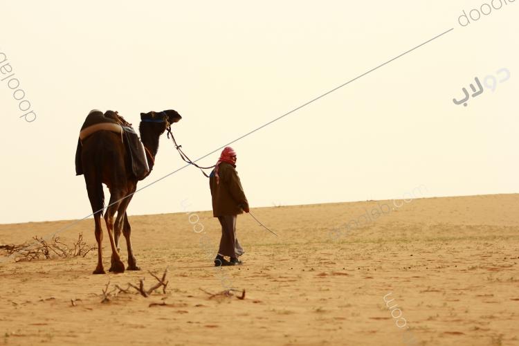 رجل الصحراء