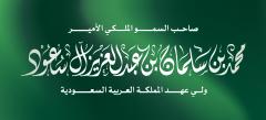 محمد بن سلمان بن عبدالعزيز