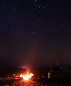 مع النجوم