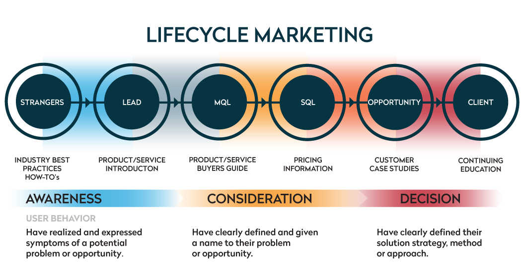 life cycle of a lead