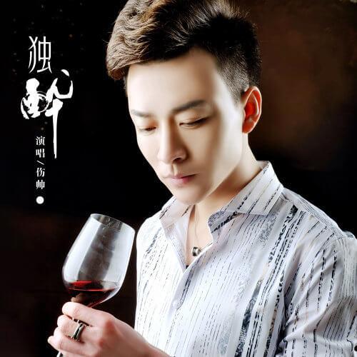 Du Zui 独醉 Drunk The Lyrics 歌詞 With Pinyin By Shang Shuai 伤帅