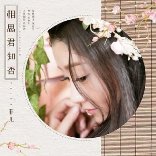 Xiang Si Jun Zhi Fou 相思君知否 Lovesickness You Know Not Lyrics 歌詞 With Pinyin By Fei Er 菲儿