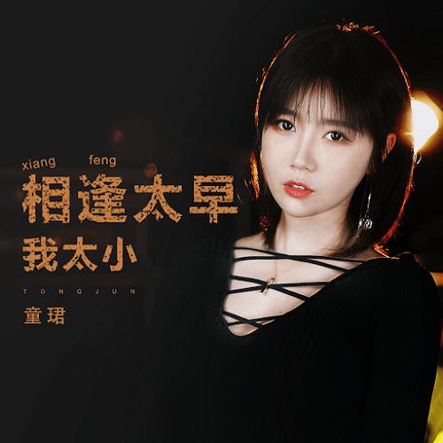 Xiang Feng Tai Zao Wo Tai Xiao 相逢太早我太小 I Am Too Young Lyrics 歌詞 With Pinyin By Tong Jun 童珺