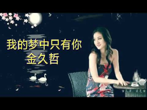 Wo De Meng Zhong Zhi You Ni 我的梦中只有你 I Only Have You In My Dreams Lyrics 歌詞 With Pinyin By Jin Jiu Zhe 金久哲