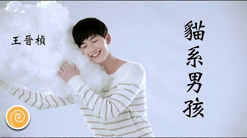 Mao Xi Nan Hai 猫系男孩 Cat Is A Boy Lyrics 歌詞 With Pinyin By Wang Ji Zhen 王晋桢 Kirk