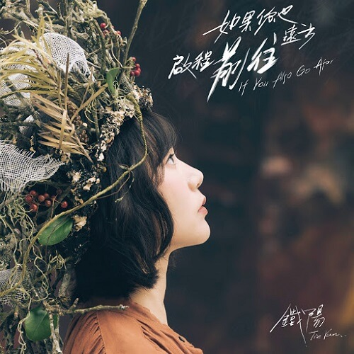 Yi Zhi Miao Xiao 蚁之渺小 The Ants Are Small Lyrics 歌詞 With Pinyin By Tie Yang 铁阳
