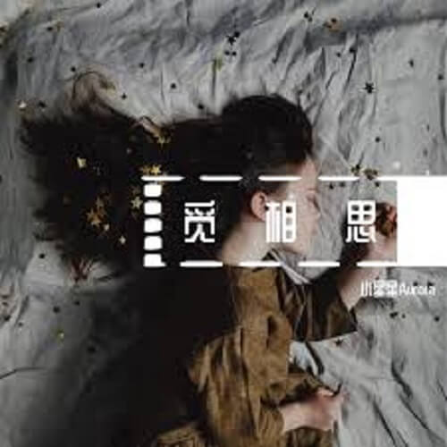 Mi Xiang Si 觅相思 Looking For Love Lyrics 歌詞 With Pinyin By Xiao Xing Xing 小星星Aurora