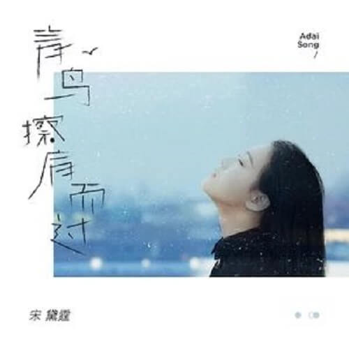 Qing Niao Ca Jian Er Guo 青鸟擦肩而过 The Bluebird Passed By Lyrics 歌詞 With Pinyin By Song Dai Ting 宋黛霆