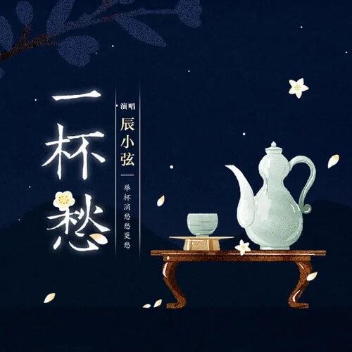 Yi Bei Chou 一杯愁 A Cup Of Sorrow Lyrics 歌詞 With Pinyin By Chen Xiao Xian 辰小弦