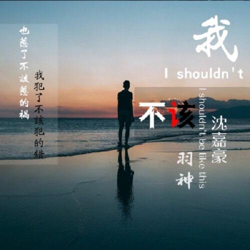 Wo Bu Gai 我不该 I Shouldn't Lyrics 歌詞 With Pinyin By Yu Shen 羽神 Shen Jia Hao 沈嘉豪