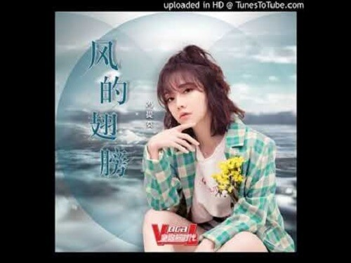 Feng De Chi Bang 风的翅膀 The Wings Of The Wind Lyrics 歌詞 With Pinyin By Feng Ti Mo 冯提莫