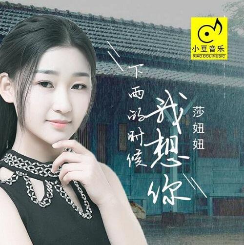 Xia Yu De Shi Hou Wo Xiang Ni 下雨的时候我想你 I Miss You When It Rains Lyrics 歌詞 With Pinyin By Sha Niu Niu 莎妞妞