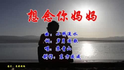 Xiang Nian Ni Ma Ma 想念你妈妈 Miss Your Mom Lyrics 歌詞 With Pinyin By Su Qing Shan 苏青山